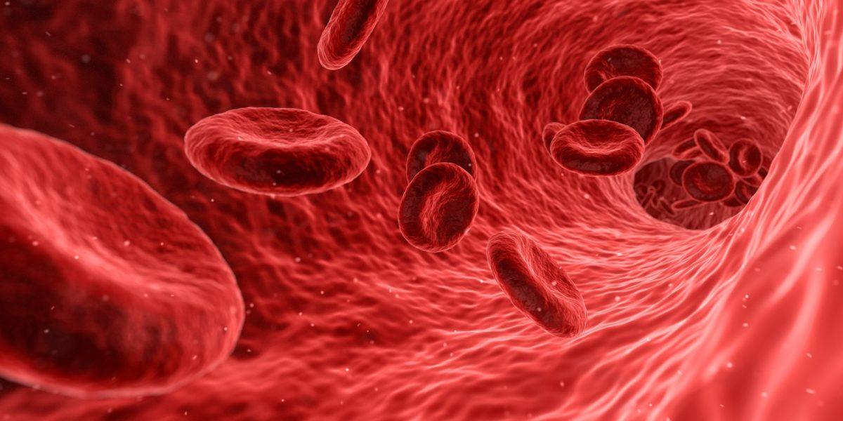 blood-1813410_1920-1200x600.jpg