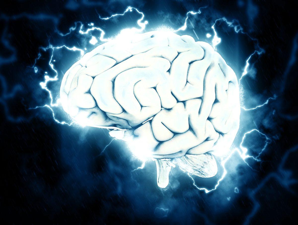 brain-1845962_1920-1200x908.jpg
