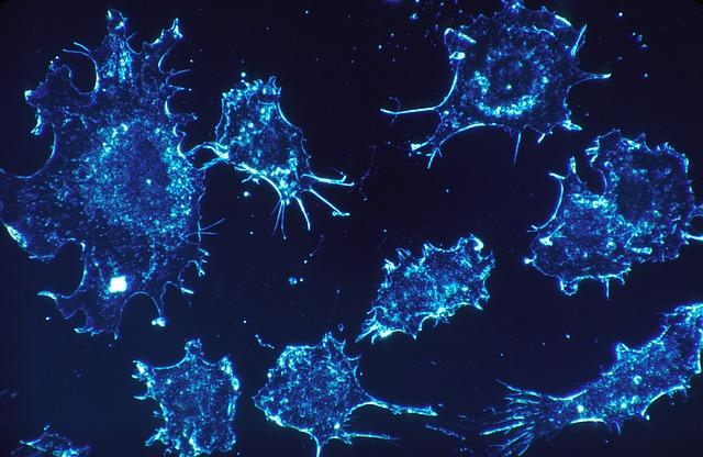 cancer-cells-541954_640.jpg