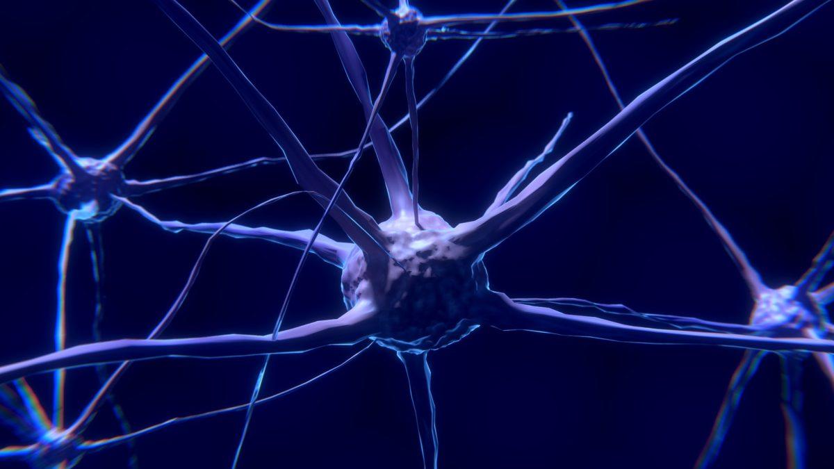 nerve-cell-2213009_1920-1200x675.jpg